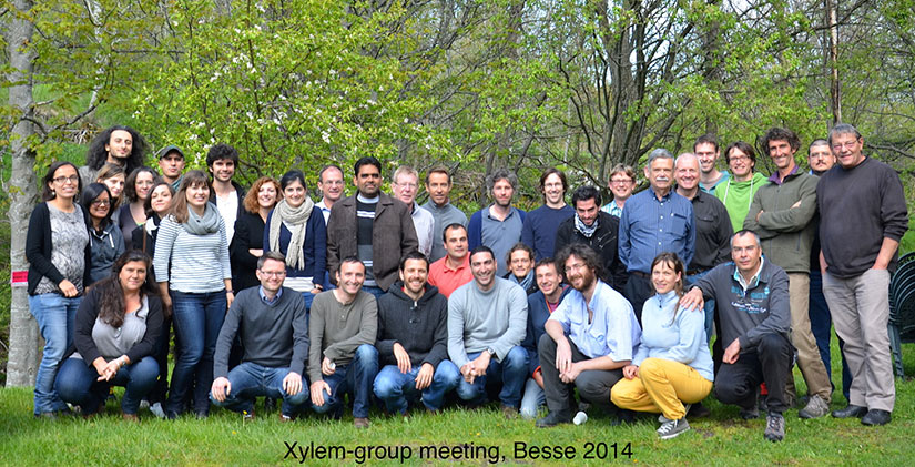 First Xylem International Meeting 2014