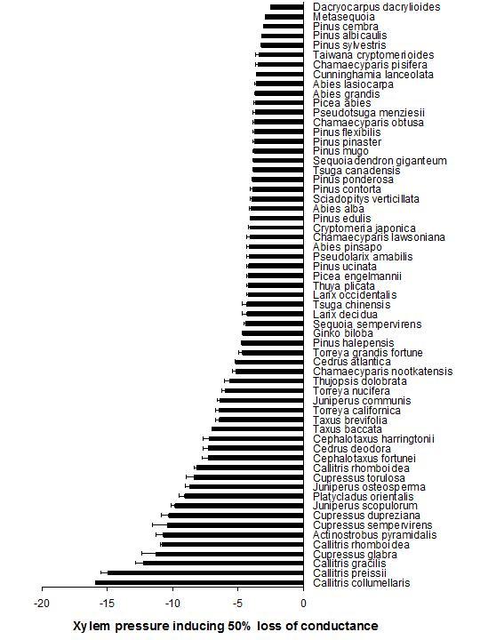 graph-P50