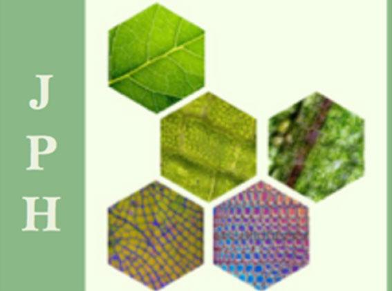 logo - Journal of Plant Hydraulic